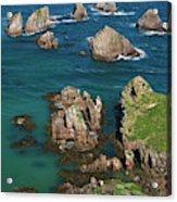 New Zealand, South Island Acrylic Print