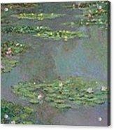 Nympheas Acrylic Print by Claude Monet