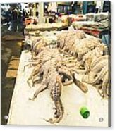 Octopus Sale In Korea Market Acrylic Print