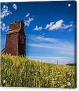 Old Grain Elevator Acrylic Print by Gerald Murray Photography