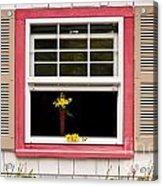 Open Window With Yellow Flower In Vase Acrylic Print