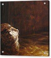 Otter Curiosity Acrylic Print