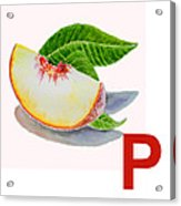 P Art Alphabet For Kids Room Acrylic Print