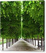 Palais Royal Trees Acrylic Print