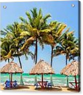 Palm Trees And Sea Acrylic Print