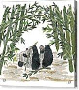 Panda Bear In Bamboo Bush Hand-torn Newspaper Collage Art  Acrylic Print