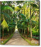 Parque Terra Nostra Acrylic Print