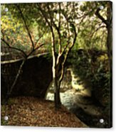 Pedestrian Bridge And Strawberry Creek  . 7d10152 Acrylic Print by Wingsdomain Art and Photography