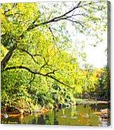 Pennsylvania Autumn Pennypack Creek Philadelphia Pennsylvania Acrylic Print