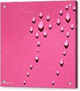 Pink Water Flower Acrylic Print by Kip Krause