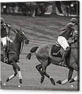 Polo Match Acrylic Print