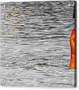 Pool Acrylic Print