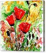 Poppy Lawn Acrylic Print