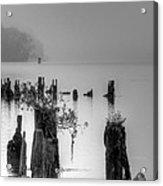 Potomac Fog Acrylic Print