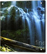 Proxy Falls Oregon Acrylic Print