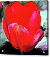 Red Hot Acrylic Print