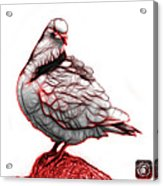 Red Pigeon Pop Art 5516 - Fs - Bb -  Modern Animal Artist James  Acrylic Print