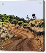 Road On Hierro Acrylic Print