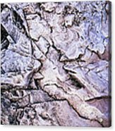 Rocks At Georgian Bay Acrylic Print