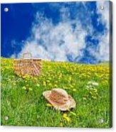 Rolling Dandelion Meadow Acrylic Print