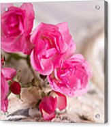 Roses And Lace Acrylic Print