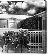 Roses Of Marrakesh Palm Springs Acrylic Print