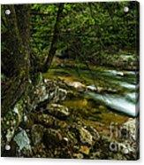 Rushing Mountain Stream Acrylic Print