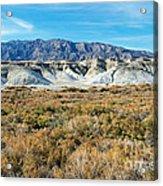 Salt Creek Death Valley National Park Acrylic Print