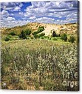 Sand Dunes In Manitoba Acrylic Print by Elena Elisseeva