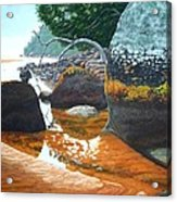 Sealers Creek Acrylic Print