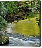 Serene Stream Acrylic Print