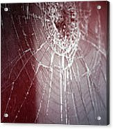 Shattered Dreams Acrylic Print