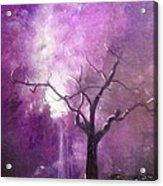 Skyeden Night Acrylic Print