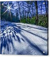 Snow Covered Road Leads Through The Wooded Forest Acrylic Print