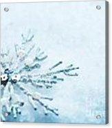 Snowflake In Snow Acrylic Print
