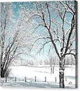Snowy Trees On The Erie Canal Acrylic Print