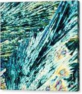 Sodium Thiosulphate Crystals In Polarized Light Acrylic Print