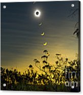 Solar Eclipse Composite, Queensland Acrylic Print by Philip Hart
