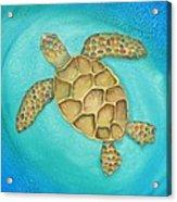 Solo Swimmer Acrylic Print