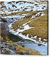 Spring Creek Acrylic Print