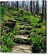 Spring In Your Step Acrylic Print