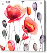 Stylized Poppy Flowers Illustration  Acrylic Print