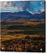 Taiga In Fall Acrylic Print