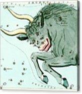 Taurus Constellation Acrylic Print