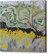 The Apple Tree And The Golden Rods Acrylic Print