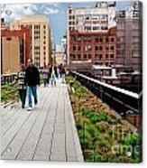 The High Line Urban Park New York Citiy Acrylic Print