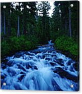 The Paradise River Acrylic Print