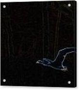 The Swan Of Tuonela Acrylic Print