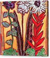 Three Flowers Acrylic Print by Diane Fine