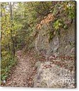 Trails Acrylic Print